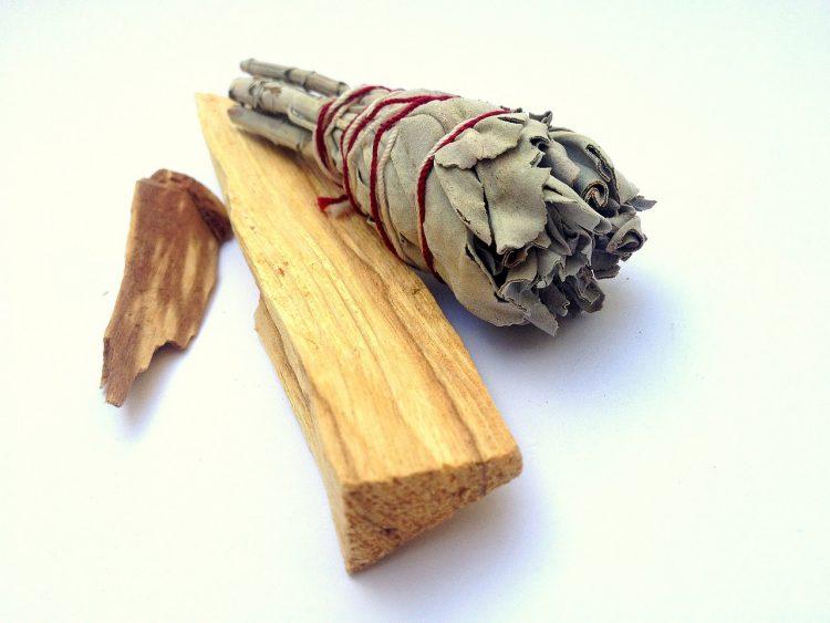 Weißer Salbei vertreibt schlechte Energien und reinigt bis in die Ecken. Foto: pixabay/dobrevune